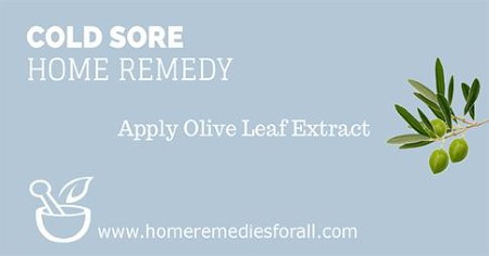 Picture of Home Remedies for Cold Sores Olive Leaf