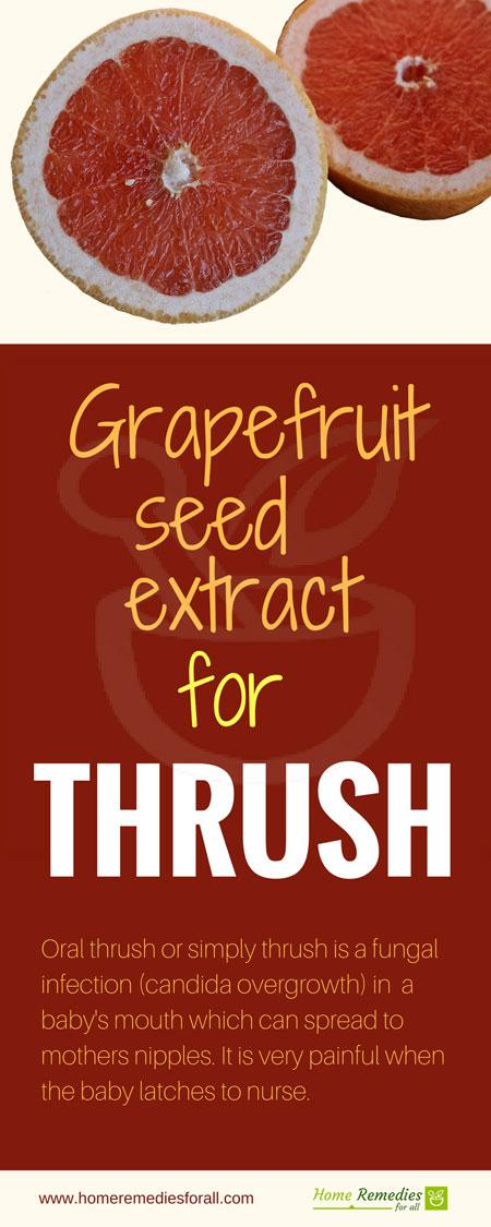 grapefruit seed extract for thrush infographic