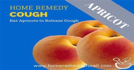 Picture of Home Remedies for Cough - Apricots