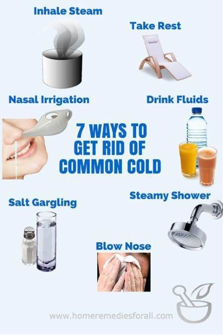 Best Natural Cure For The Common Cold