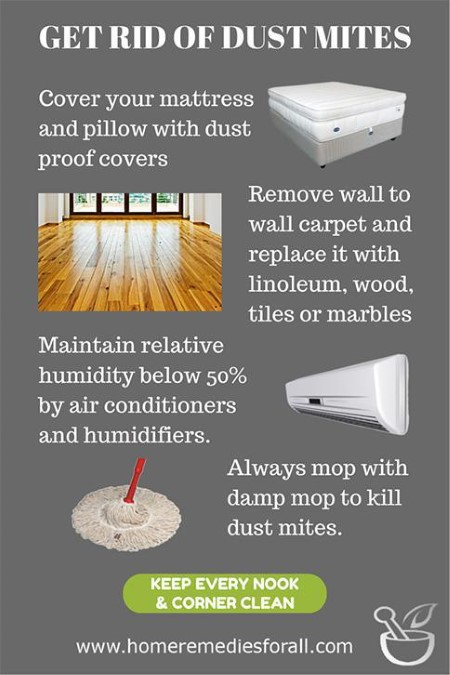 Get Rid Of Dust Mites With These Home Remedies