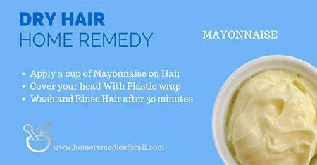 Picture of Home Remedies for Dry Hair