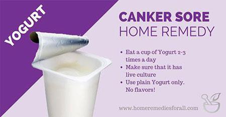 Picture of Home Remedies for Canker Sore Yogurt