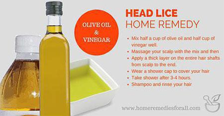 Picture of Home remedies for Head Lice - Oilive Oil