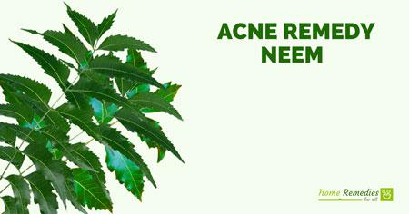 neem for acne treatment