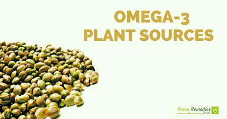 5 plant based omega 3 fatty acids for vegans and vegetarians for Fish rich in omega 3